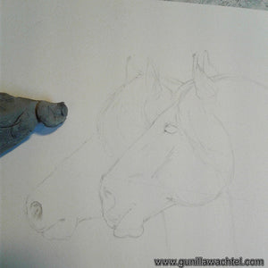 Artwork in Progress Update - Two Horses - Another Update