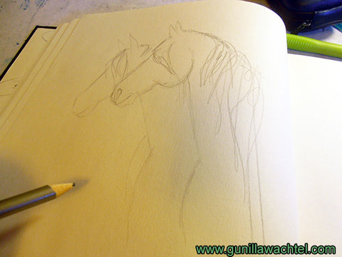 Sketchbook page horse drawing Gunilla Wachtel