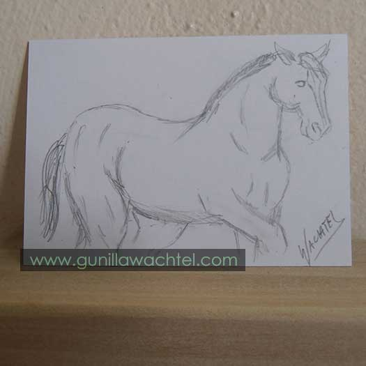 30 Days of Horses ACEO #5 Drawing Gunilla Wachtel