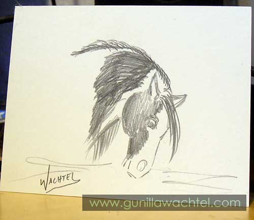 30 Days of Horses Day 3 ACEO Drawing Gunilla Wachtel