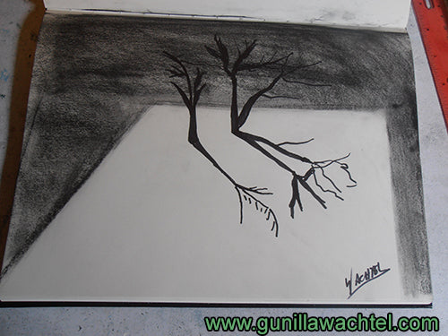 3D Drawing Trees Gunilla Wachtel