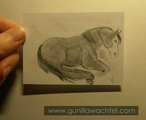 Daily Drawing 28 horse sketch Gunilla Wachtel