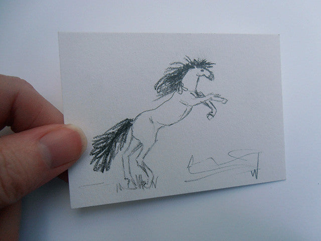Daily Drawing 30 - Horse ACEO drawing Gunilla Wachtel Art