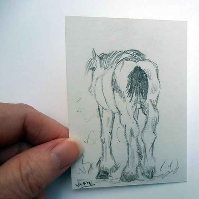 Daily Drawing 26 - ACEO horse pencil drawing Gunilla Wachtel