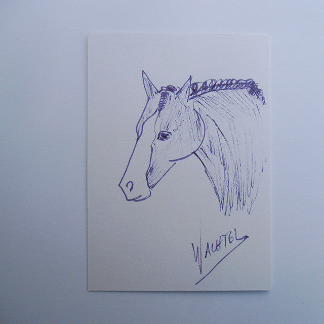 ACEO ink drawing horse Gunilla Wachtel