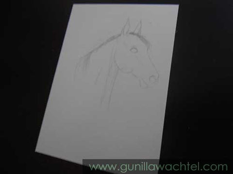 ACEO in progress - Gunilla Wachtel