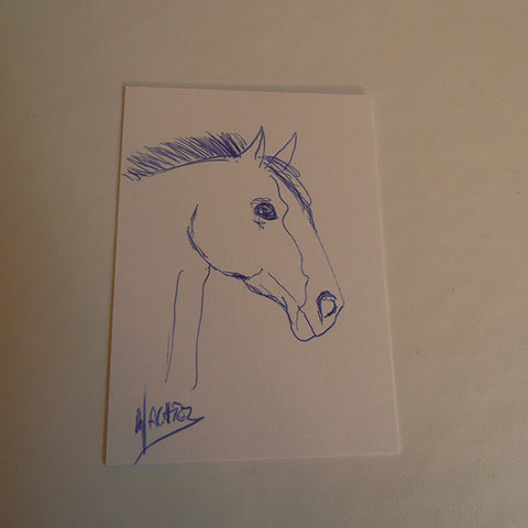 ACEO horse drawing ink ballpoint pen Gunilla Wachtel art