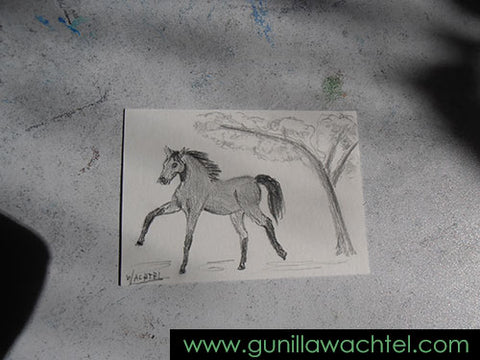 ACEO work in progress 1 Gunilla Wachtel horse drawing