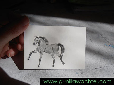 ACEO work in progress 2 - Gunilla Wachtel horse drawing