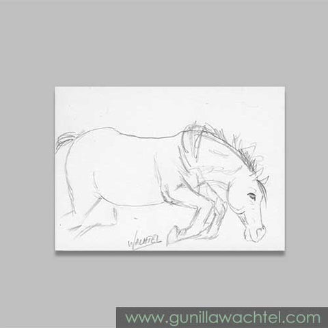 Daily Drawing 23 ACEO Pencil Horse Sketch Drawing Gunilla Wachtel