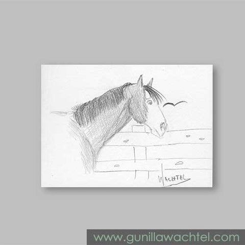 ACEO original horse drawing Gunilla Wachtel. Daily Drawing 34.