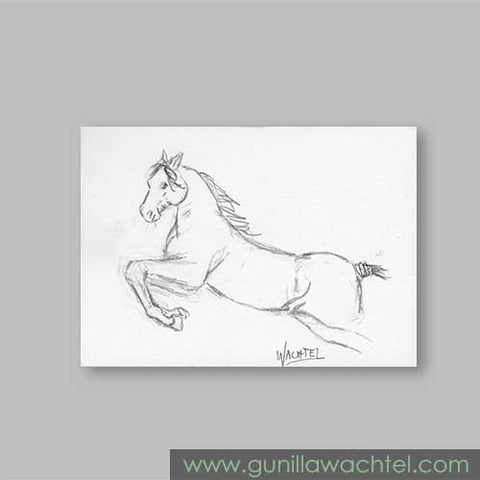 Horse ACEO original Daily Drawing 16 Gunilla Wachtel
