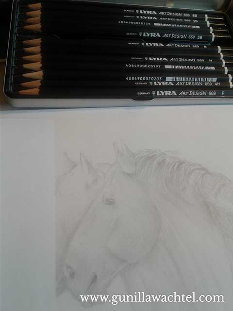 Buddies - Work in Progress horse pencil drawing Gunilla Wachtel