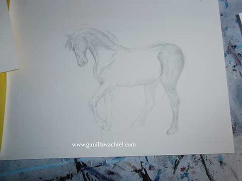 Pencil drawing artwork in progress - Gunilla Wachtel