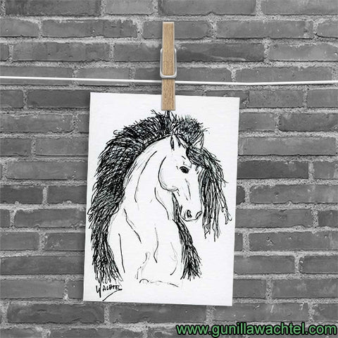 Friesian Horse ACEO card