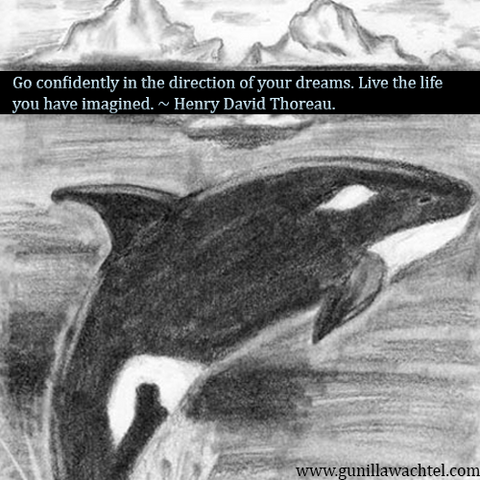 Quote and Orca Whale Pencil Drawing Gunilla Wachtel
