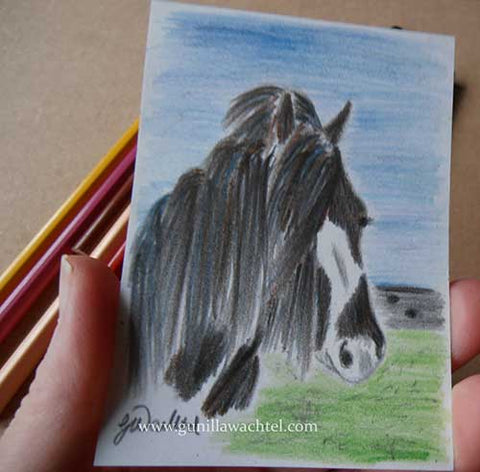 Gypsy Vanner horse ACEO original color pencil drawing Gunilla Wachtel