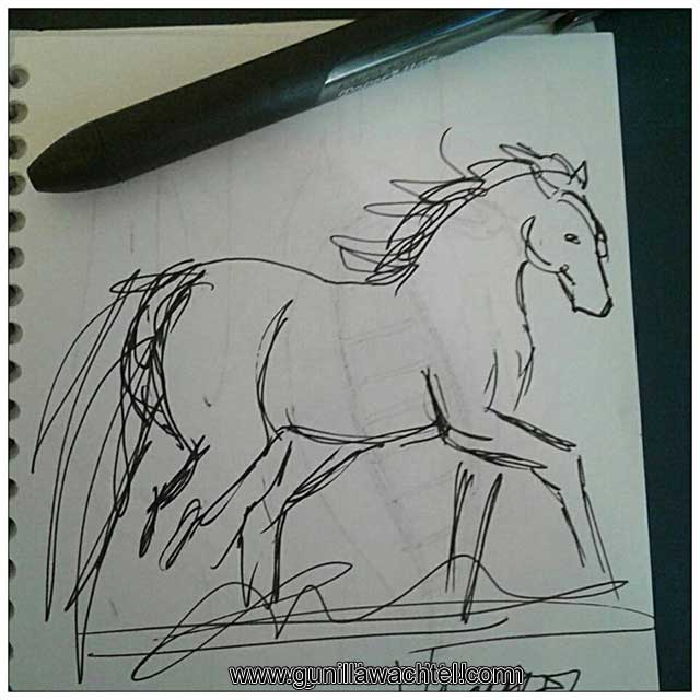 Horse Sketchbook Sketch Pen Gunilla Wachtel