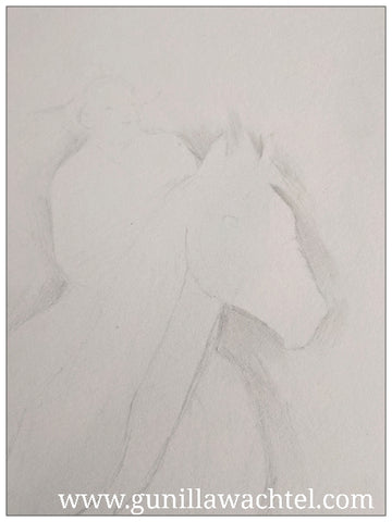 Gunilla Wachtel artwork horse sketch