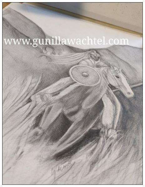 Gunilla Wachtel horse drawing Viking