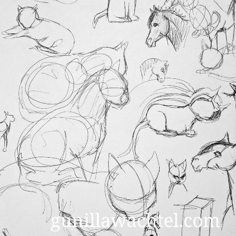 Cats and horses sketches by Gunilla Wachtel