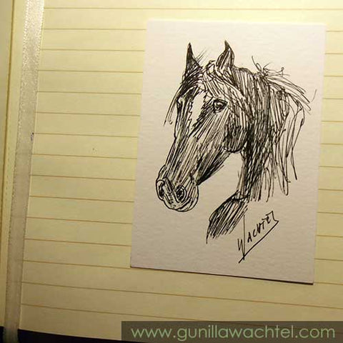 Mini Treasures 39 - Arabian Horse ACEO drawing - Gunilla Wachtel
