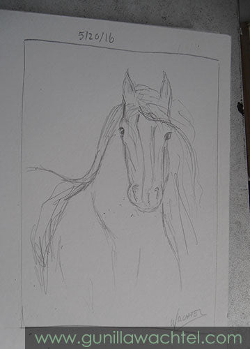 A horse sketch from my sketchbook. Gunilla Wachtel.