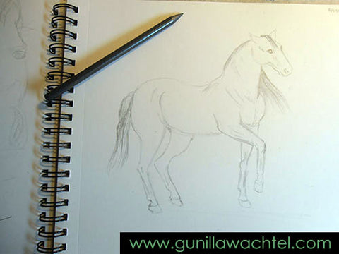 Horse Sketchbook Drawing Gunilla Wachtel