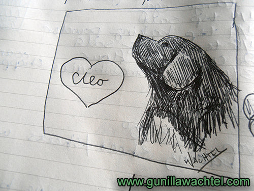 Pen drawing of Cleo the Newfoundland Dog Gunilla Wachtel
