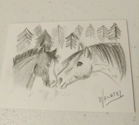Mare and foal. Pencil Drawing ACEO by Gunilla Wachtel