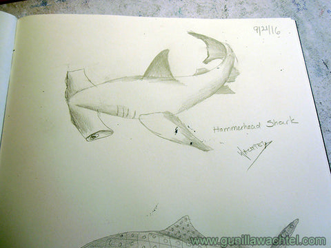 Shark Sketches Gunilla Wachtel Kanweienea Kreations