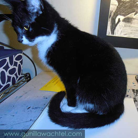 Tuxie the tuxedo cat on my drafting table - Gunilla Wachtel - Kanweienea Kreations studio