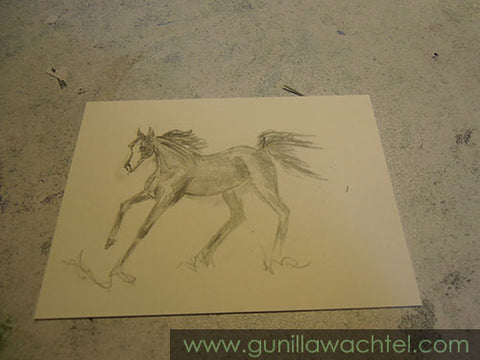 ACEO horse drawing by Gunilla Wachtel