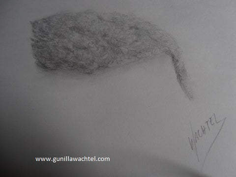 art study curly hair - Kanweienea Kreations