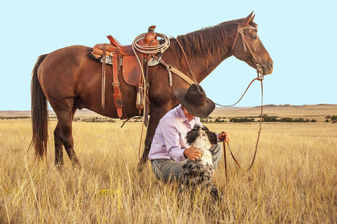 Cowboy with horse and dog