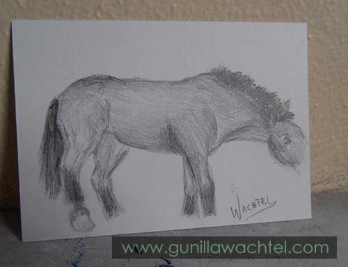 Daily Drawing 10 - ACEO - Gunilla Wachtel