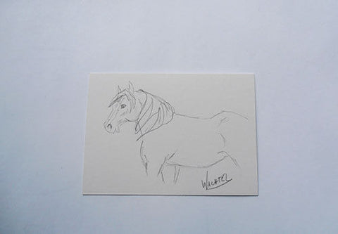 Daily Drawing 11 Gunilla Wachtel ACEO horse drawing