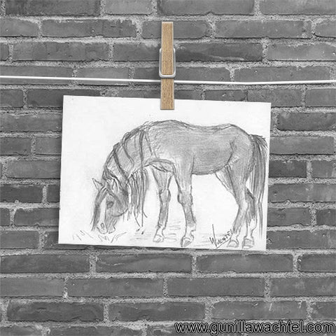 Daily Drawing 12 Horse ACEO card Gunilla Wachtel