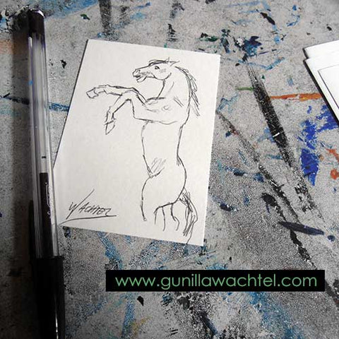 Daily Drawing 20 - ACEO horse drawing - Gunilla Wachtel