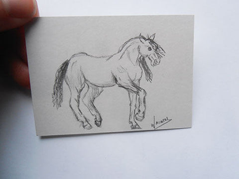 Daily Drawing 6 ACEO horse art card Gunilla Wachtel