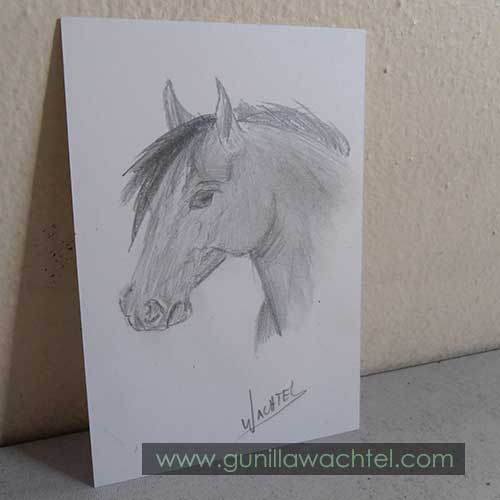 Daily Drawing #9 - ACEO original - Gunilla Wachtel
