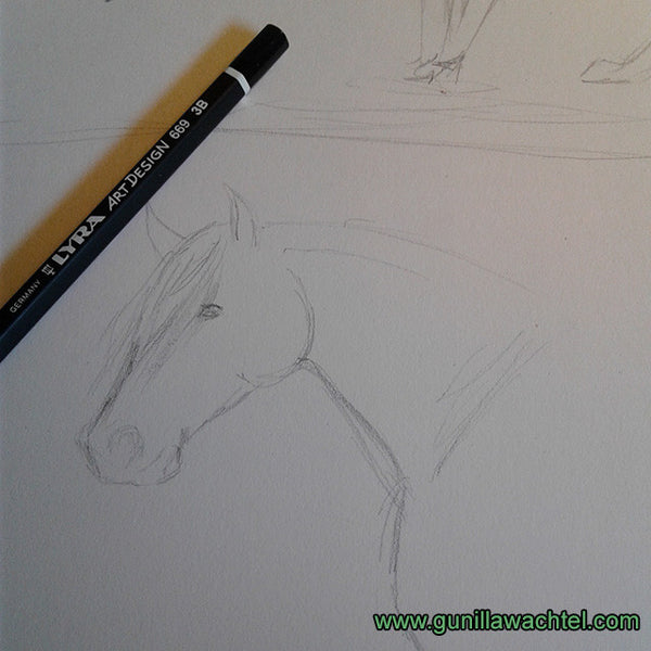 horse sketch pencil Gunilla Wachtel