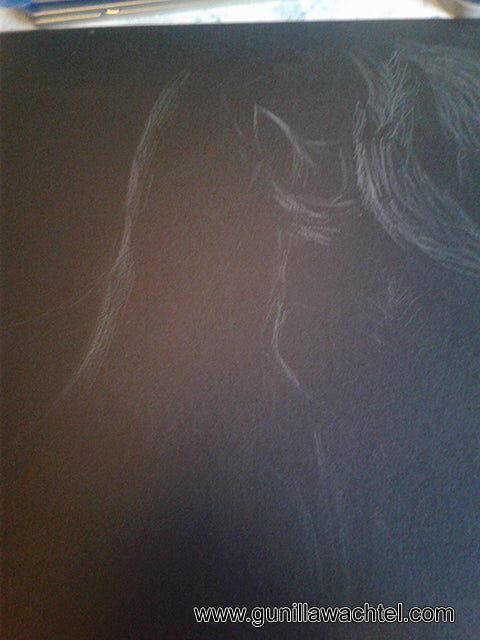 horse drawing in progress Gunilla Wachtel