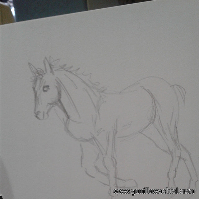 horse drawing by Gunilla Wachtel
