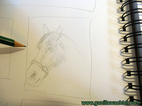 Horse Sketch Sketchbook Gunilla Wachtel Pencil Drawing