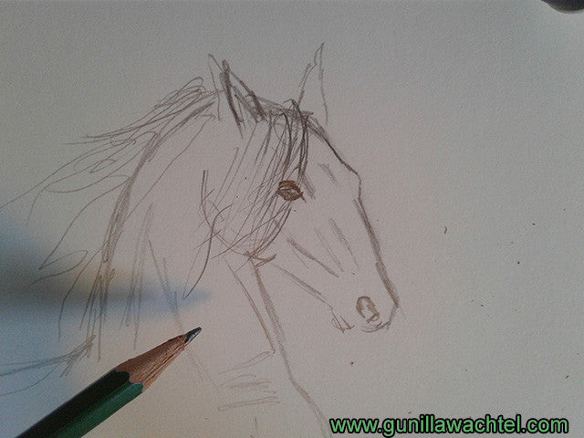 horse artwork in progress