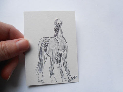 Marwari Horse ACEO Drawing Art Gunilla Wachtel