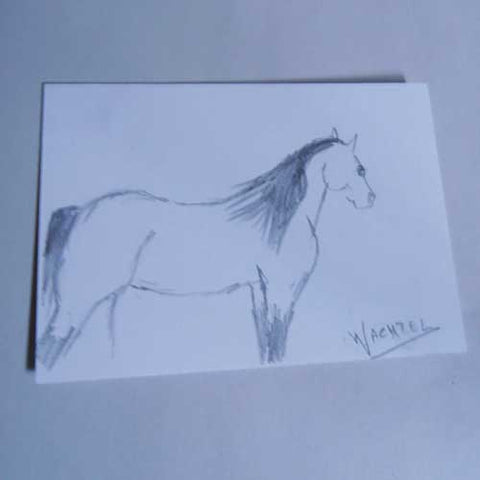 Mini Treasures 36 - Gunilla Wachtel ACEO drawing