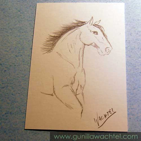 Mini Treasures Feb 19 Horse Sketch Gunilla Wachtel