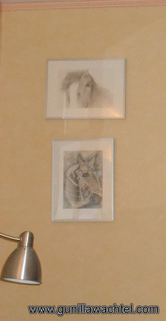 Drawings in collector's home Gunilla Wachtel Artwork